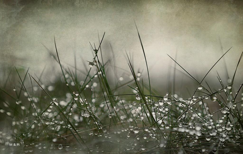 Llueve, llueve, sigue lloviendo...